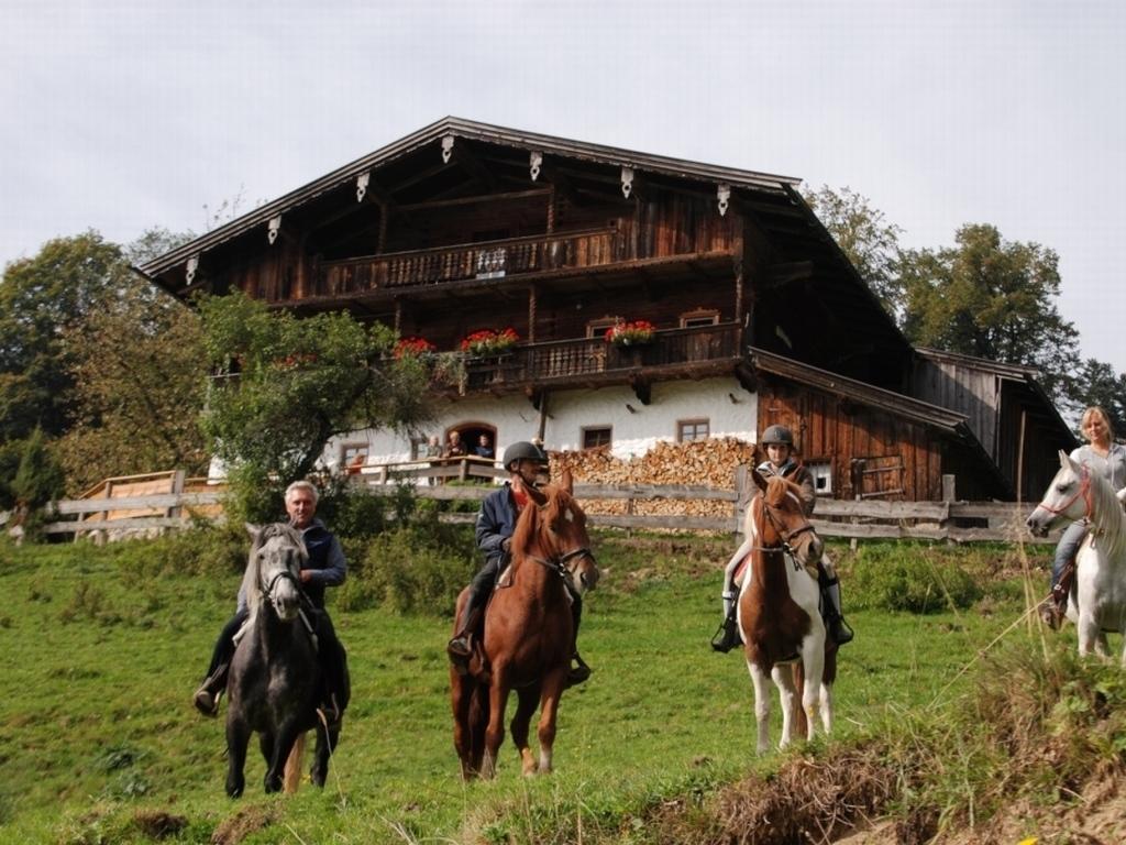 Klettersteig Walchsee : Gabnalm walchsee kaiserwinkl gruppenhaus für pers mieten